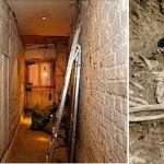 Was Benjamin Franklin A Serial Killer? 1200 Human Bones Discovered In A Pit In His Basement